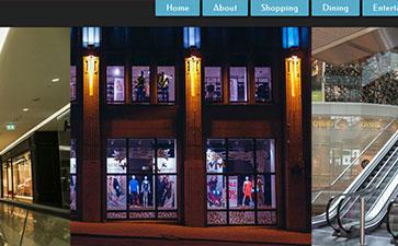 购物中心网站模板
