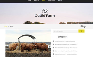 奶牛养殖公司模板