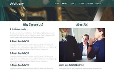 信息咨询网站模板