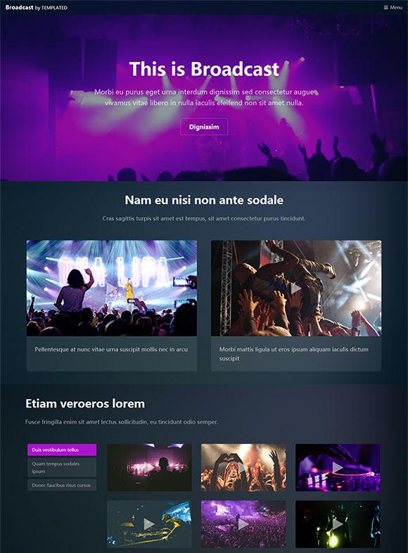 演唱会网站模板